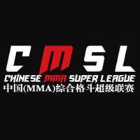 大成武艺MMA超级联赛