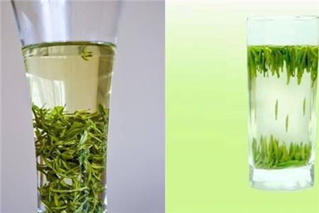 绿茶有哪些 带你认识4种常见的种类