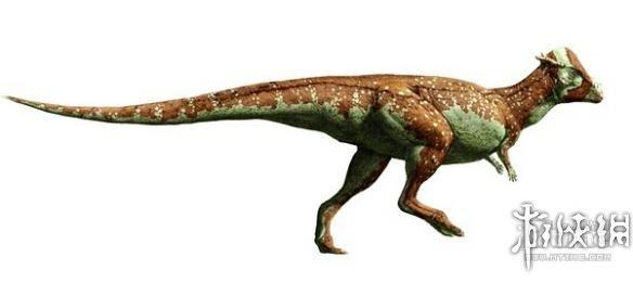 恐龙的种类名称和图片21