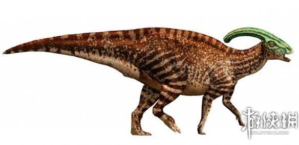 恐龙的种类名称和图片20