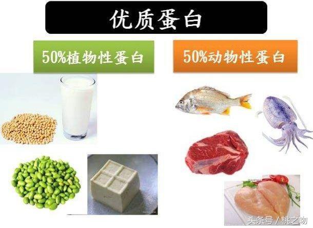 人体必需的七大营养素