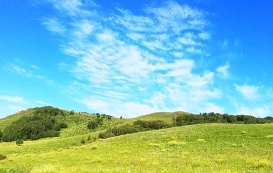 旅游:内蒙古——乌兰布统草原