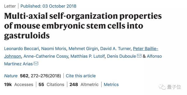 21天的你长这样?剑桥博士小姐姐造「人造胚胎」,2篇Nature到手