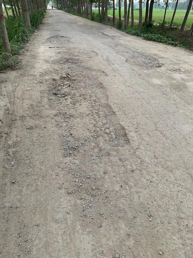 周口市一料场涉嫌占用可耕地 污染环境 毁坏道路
