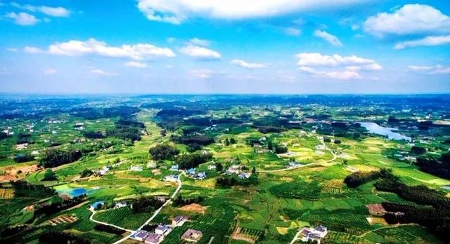 四川省乡村振兴示范县(市、区)案例分析五:眉山市丹棱县
