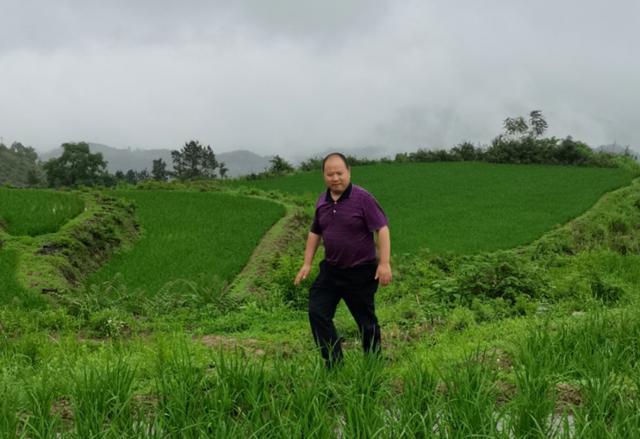 省品牌中心主任品牌联盟主席李俊成莅临洋县乡土文化研究院调研