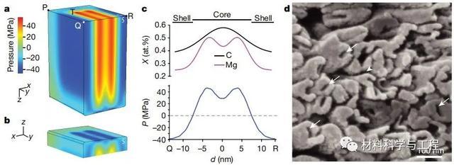 美国材料科学家,研究了一颗牙齿,还发了篇《Nature》