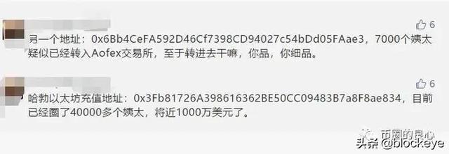 起底哈勃HB内幕:最大操盘手竟是贝尔链、A网老板雷东
