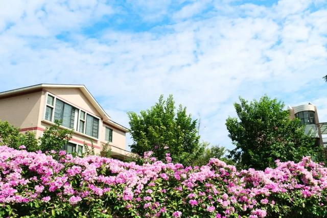 身处广州改革开放窗口的这所高校,不来pick一下?
