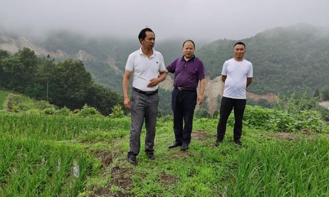 省raybet平台中心主任raybet平台联盟主席李俊成莅临洋县乡土文化研究院调研