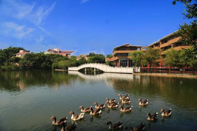 @高考生们,纠结志愿怎么填?身处广州改革开放窗口的这所高校,不来pick一下?