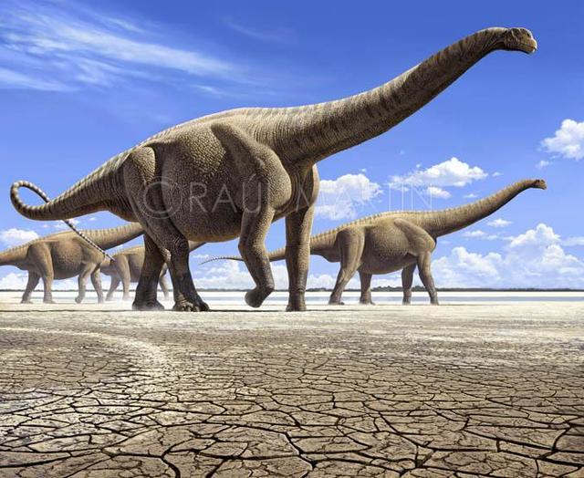 世界最大恐龙排行榜,易碎双腔龙体重可达220吨-第3张图片-IT新视野