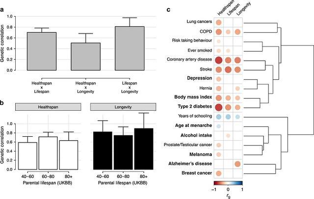 科学家新研究发现血液中铁的水平是健康与衰老的关键