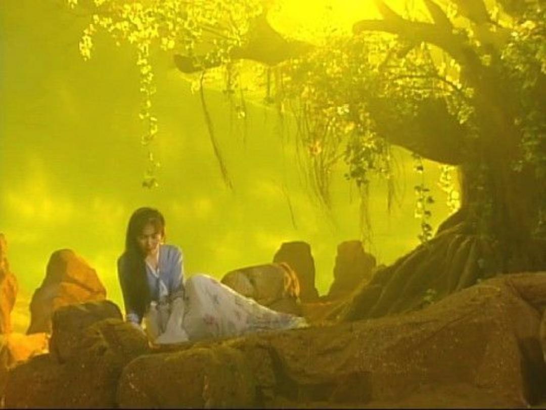 圆月弯刀里温碧霞饰演的秦可情,和原著的秦可情差别有多大?