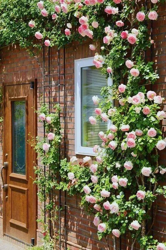 不要羡慕顾佳的大房子了,看看有花门和花窗的房子多美