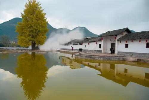 釋放鄉村文化魅力 促進鄉村旅游發展