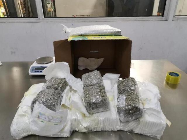 海关查获2公斤大麻!加拿大入境快件,毒品竟然藏进尿不湿