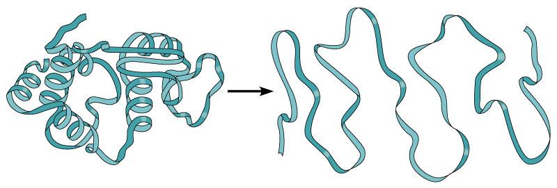 怎样 处理 蛋白 表达 实验 中 出现 的 包涵体?