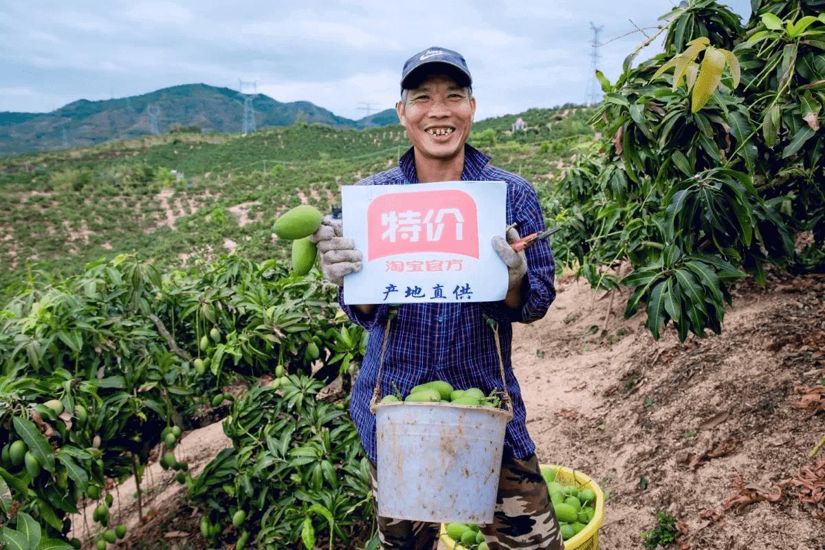 淘宝特价版大力卖食品生鲜,能否将农民收入搞上去?