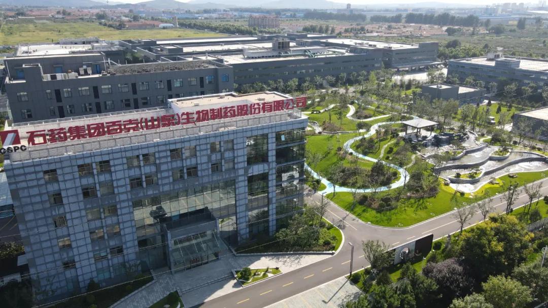 创新百强+绿色工厂 石药两子公司获殊荣