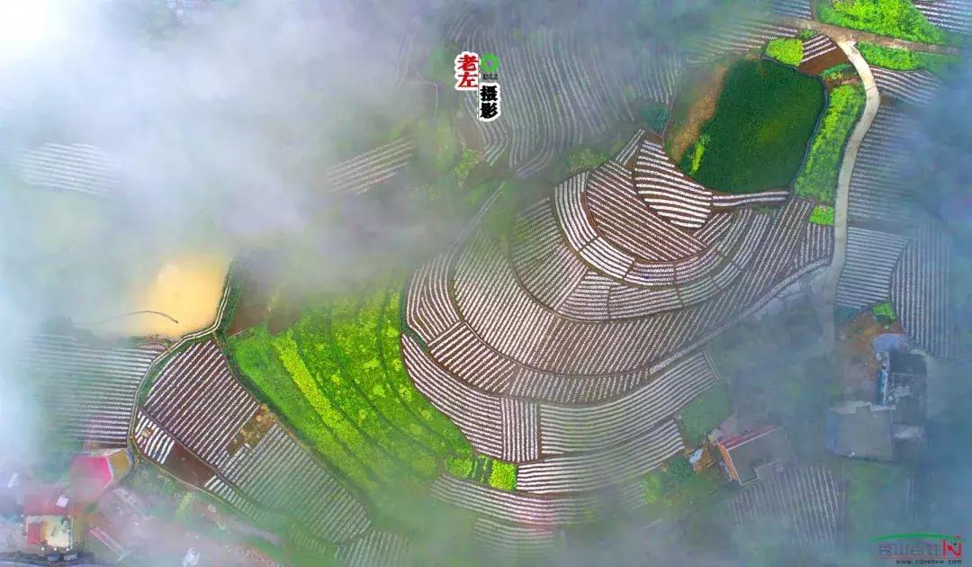秀山影像——我的乡土情结第一季