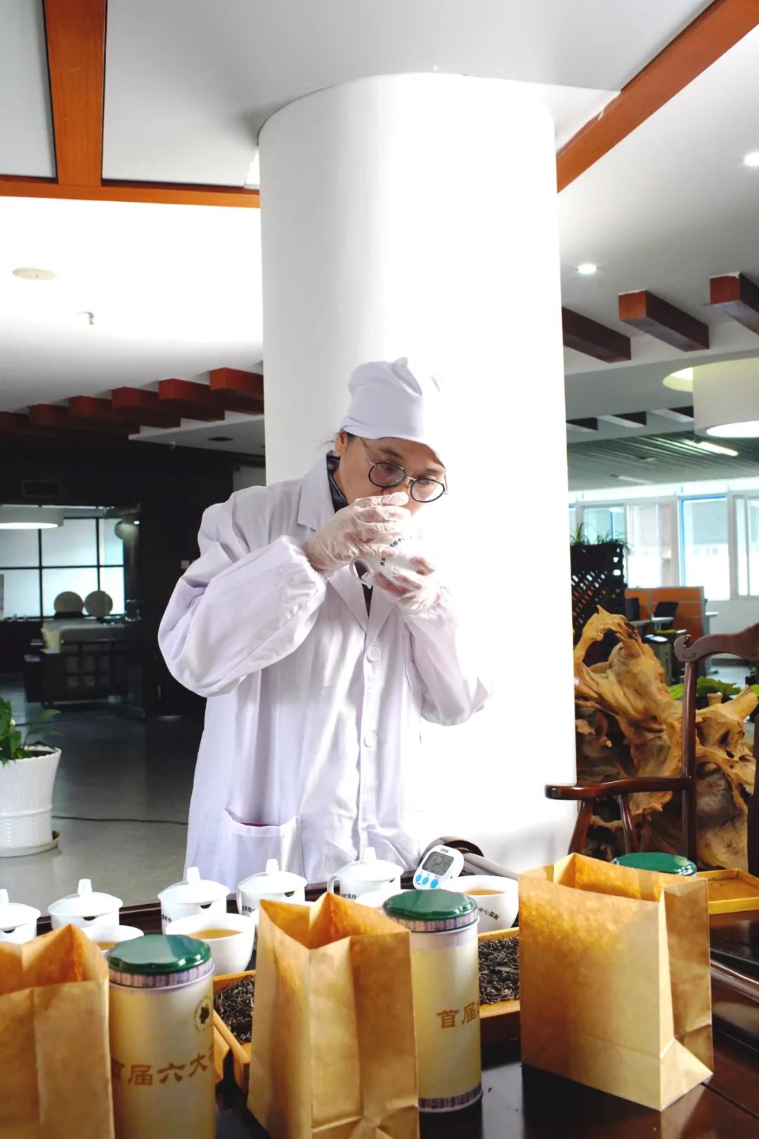 喜报!六大茶山董事长阮殿蓉女士入选中国制茶大师候选人