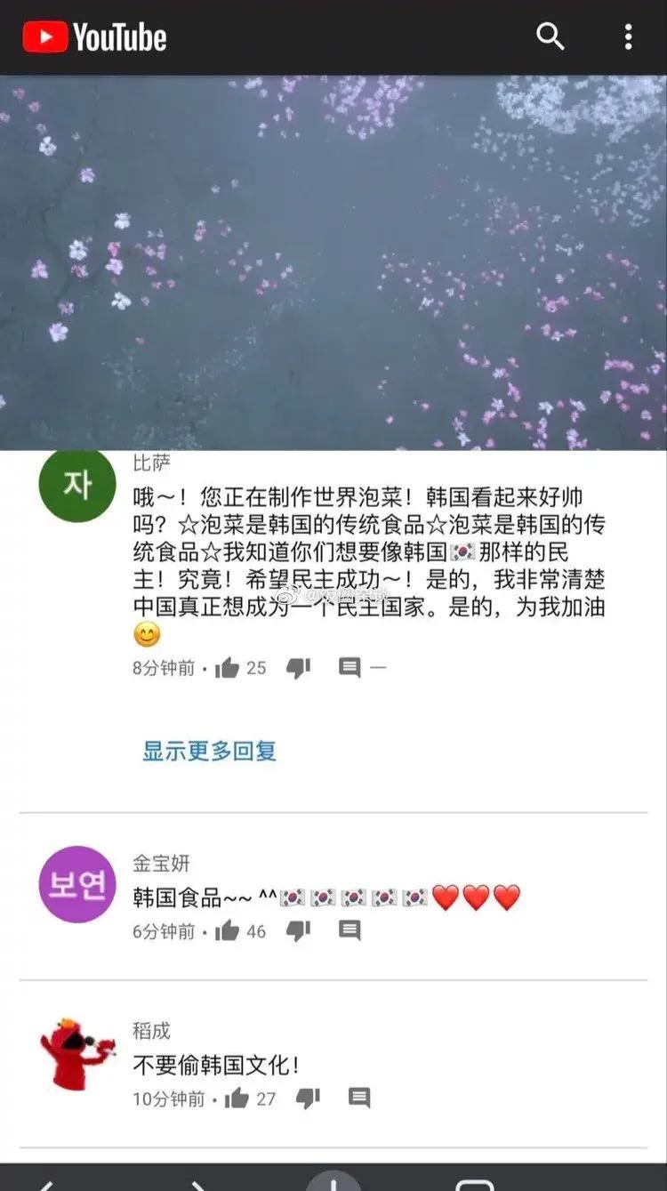 李子柒最新制作的视频被韩国人冲了