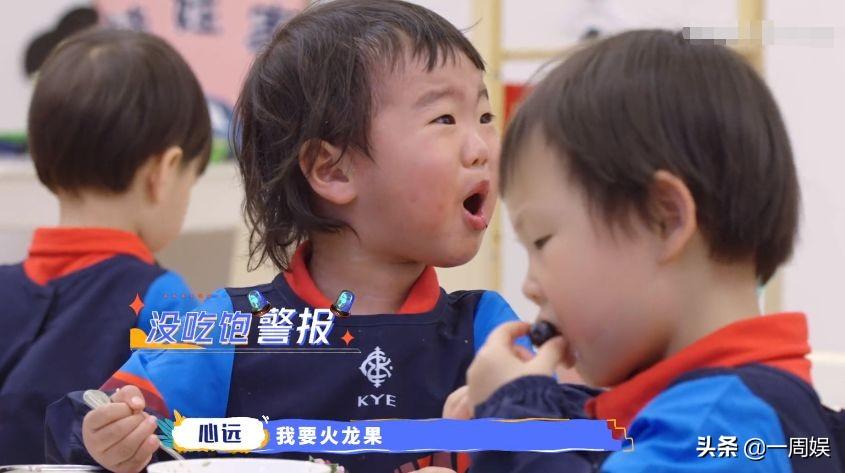 张柏芝体验当幼师,经验丰富让人佩服,终于明白她为何生三胎