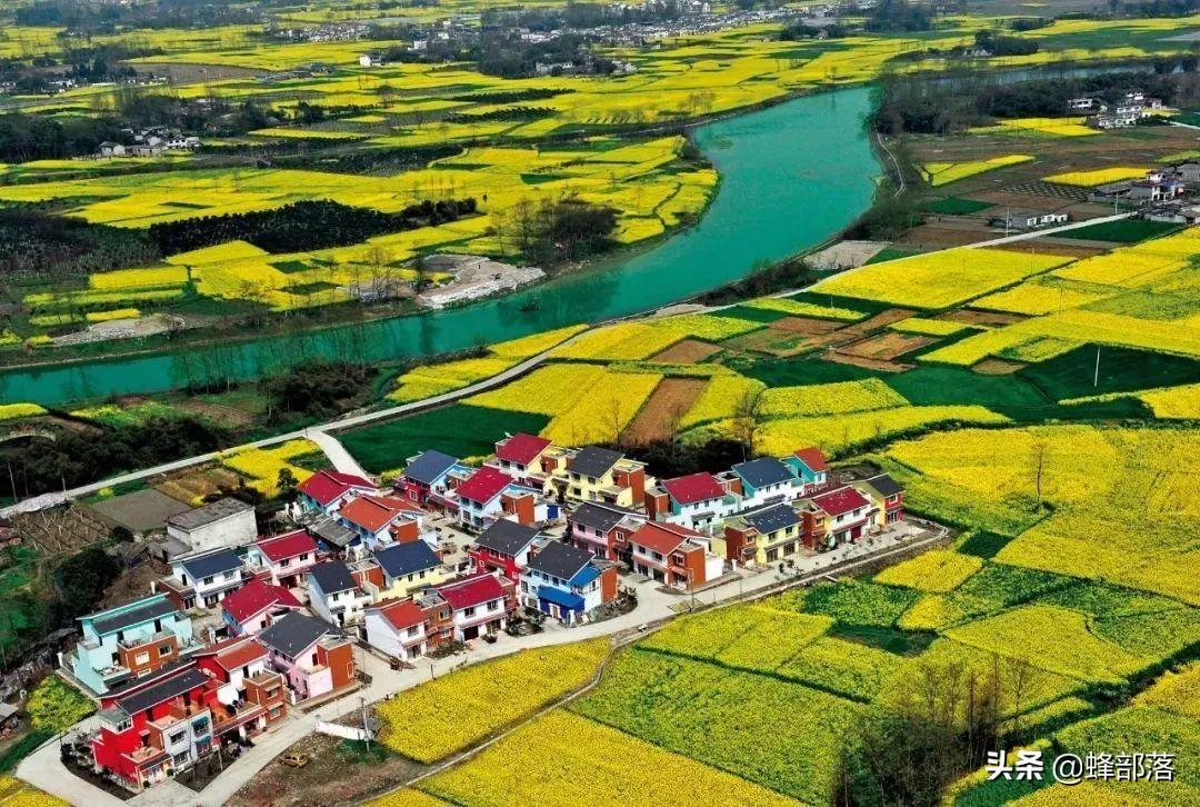 2021农村未来10大项目,蕴含万亿发展商机,抓住一项就有大发展