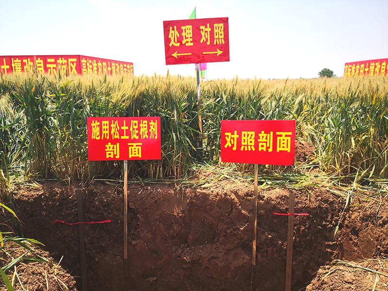 从耕层质量实况看健康耕层构建技术的重要性