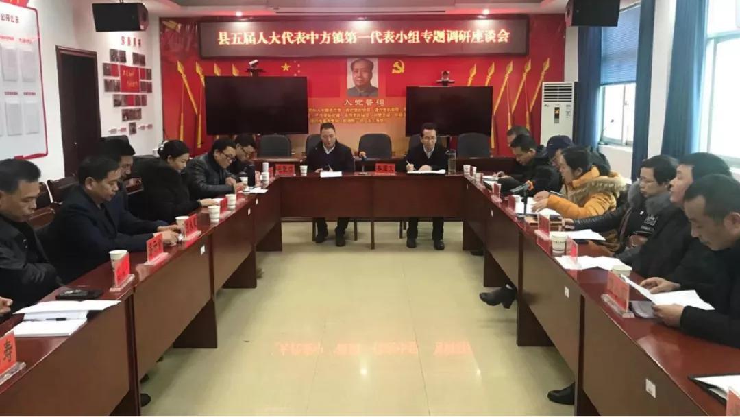 中方縣五屆人大代表中方鎮第一代表小組專題調研民生實事項目票決制實施工作