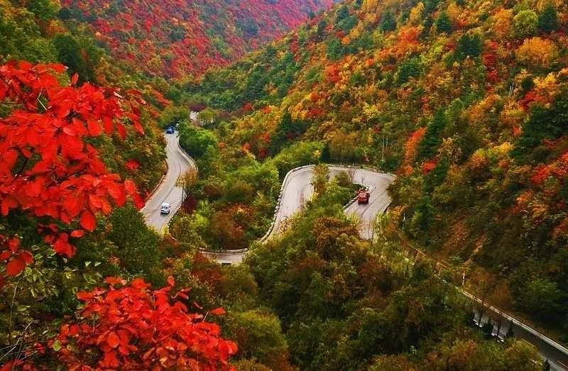 陕西各地红叶已美成仙境,收藏这一篇就搞定,随便拍都是风光大片