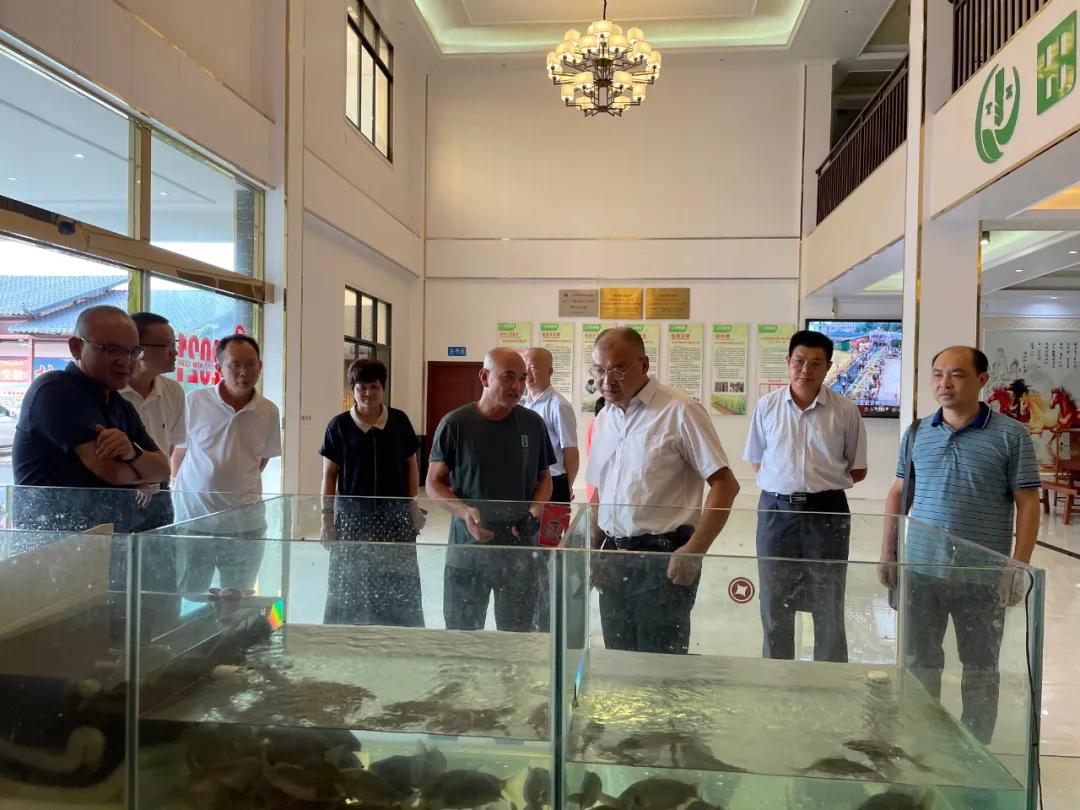徐金华副主席带队到广西梧州市考察乡村振兴工作