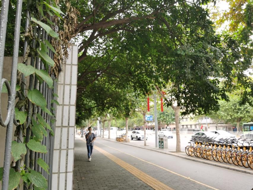 太白路得名于太白庙,苏东坡也曾为民求雨,写下《喜雨亭记》