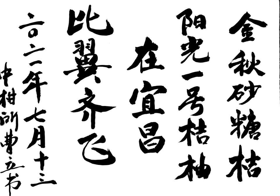 """柑橘界""""袁隆平""""现身宜昌,他的杂交柑橘打败洋水果,技术领先"""