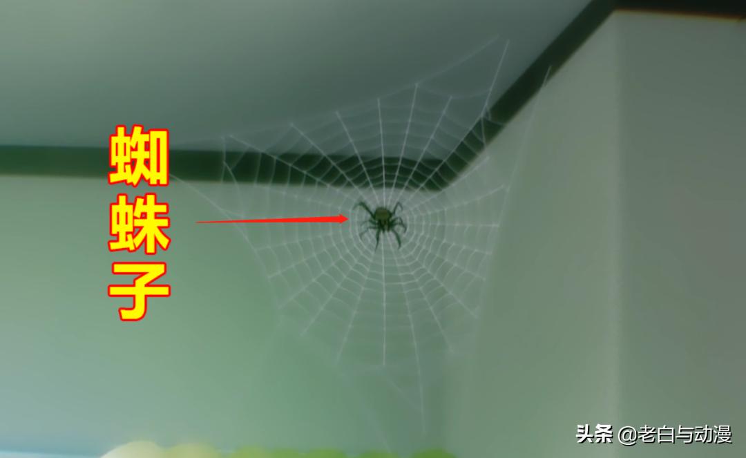 轉生前的蜘蛛子登場,你發現了嗎?