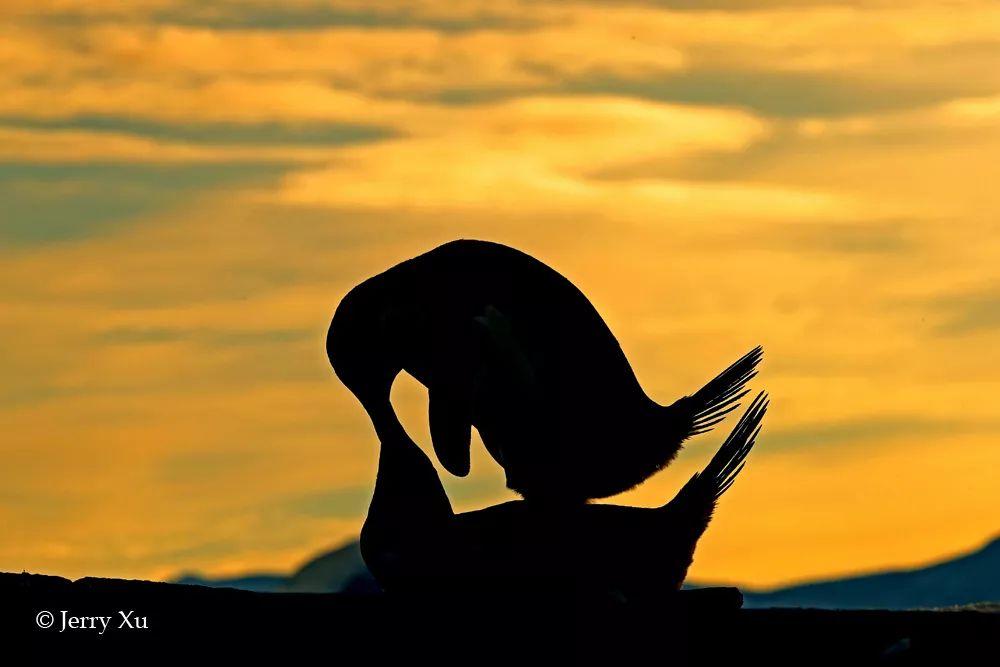 你见过凌晨2点半的南极半岛吗?