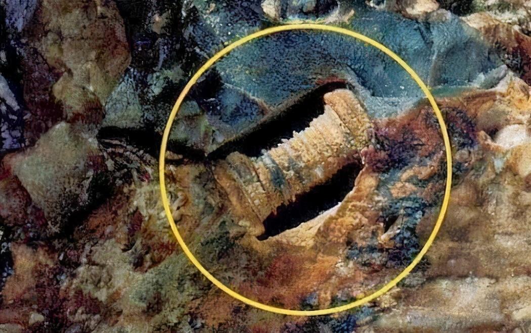 """地球存在""""几亿年前不应该存在的东西""""?史前文明是否真的存在?"""