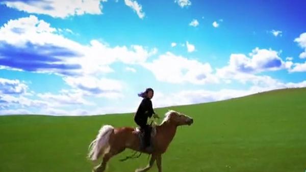 内蒙古太仆寺旗法官背国徽策马办案,每年要深入牧区50余次