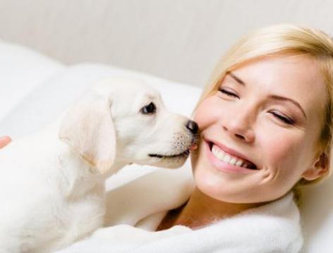 如果你睡着后,你家狗狗会做这6件事,证明没白养