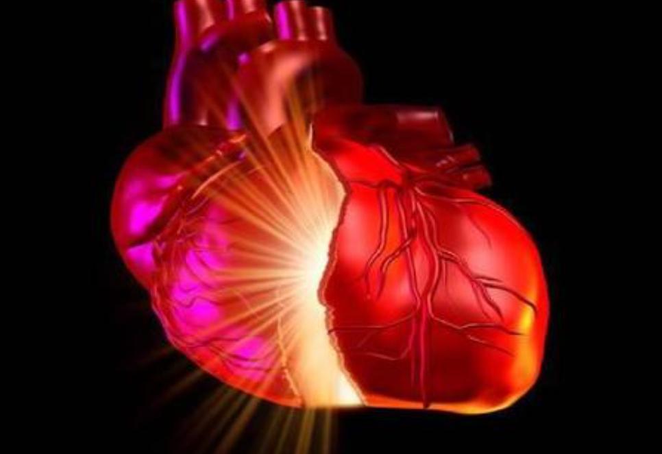 快訊!馬拉多納死因確定,系擴張型心肌病引發的心力衰竭和猝死