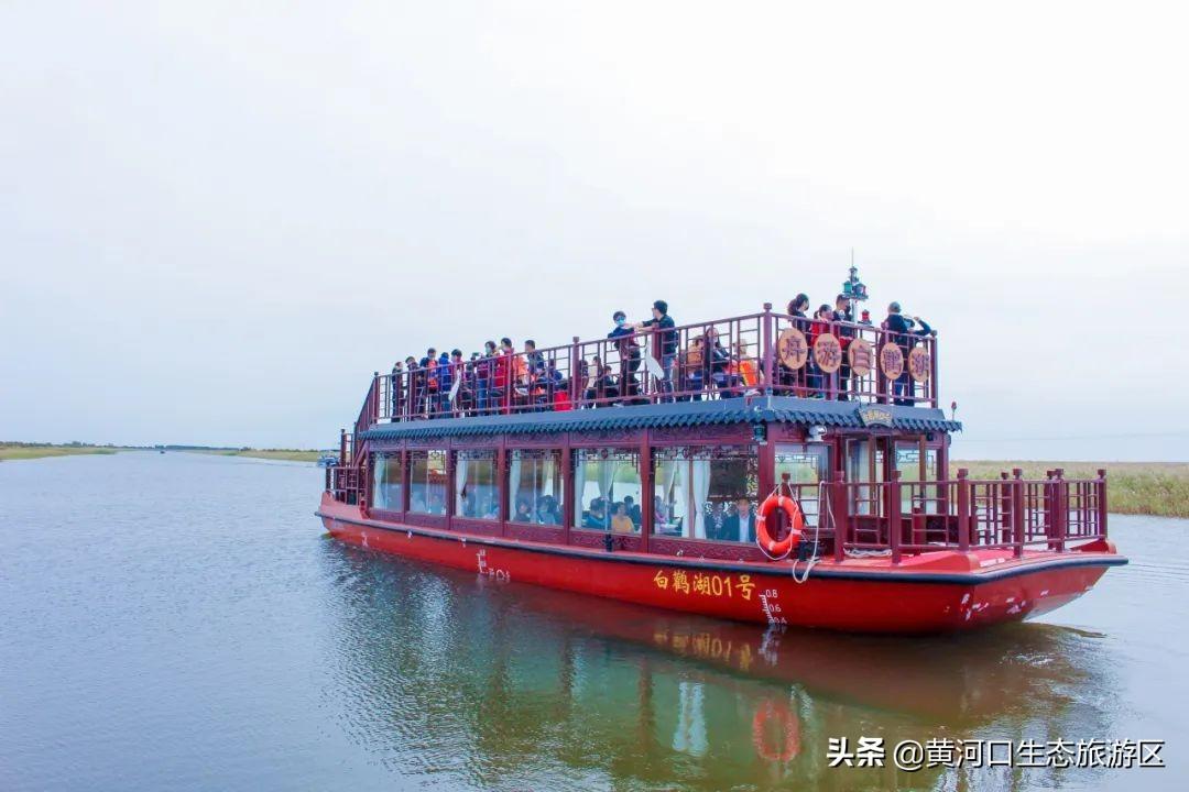 【黄河口生态旅游区】国庆假期精彩纷呈!