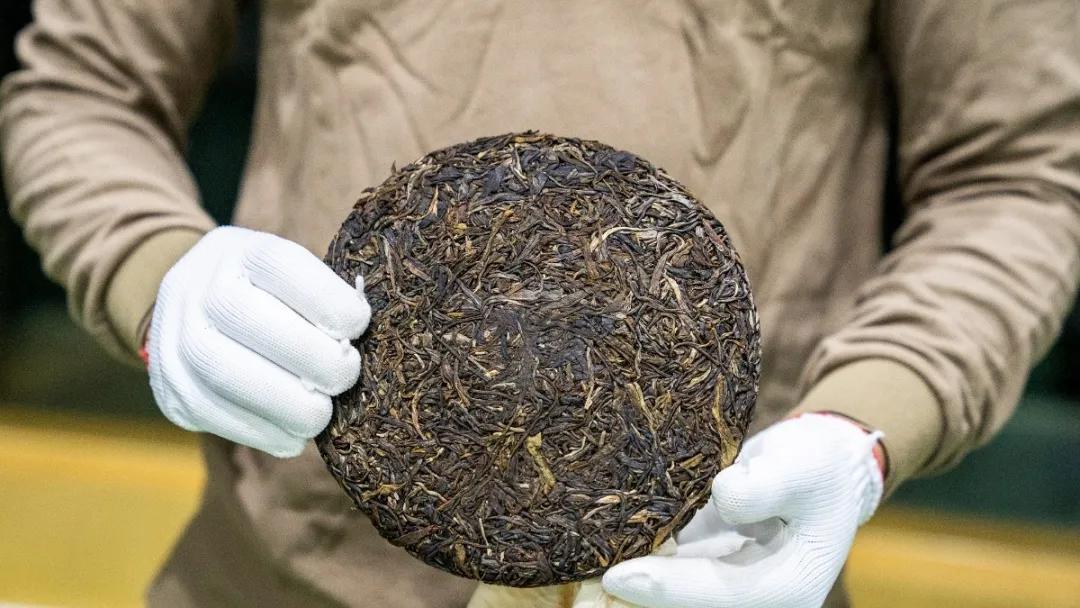 春茶季|贺开万亩茶园出新绿,首批春茶本周开采