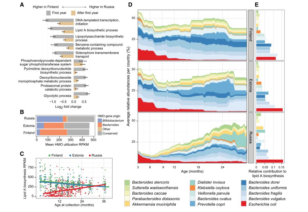 微生物多样性16S+宏基因组的组合您见过吗?| 医学篇