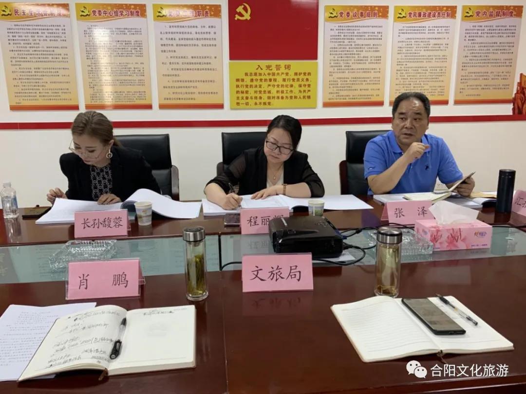 """合阳县""""十四五""""文化和旅游发展规划通过评审"""